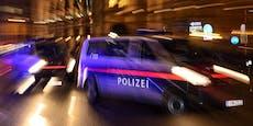 Wiener Teenies schlagen Scheibe ein, bedrohen Polizei