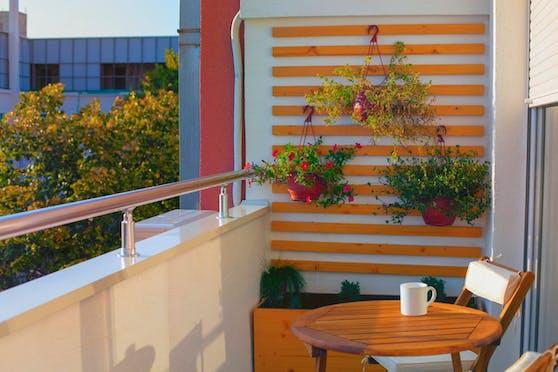 Auch bei kleineren Balkonen muss man nicht auf Pflanzen verzichten.