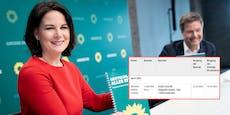 Grüne erhalten Rekordspende von 1 Million Euro