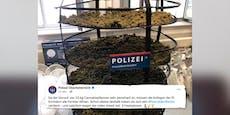 """Hier """"lagert"""" die Polizei 23 Kilogramm Cannabis"""