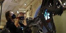 NHM bringt jetzt die Dinosaurier zu dir ins Wohnzimmer!