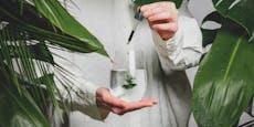 TikTok-Trend: Chlorophyll-Wasser für reine Haut?
