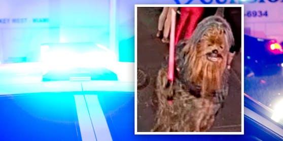 In New Orleans wird ein gewalttätiger Wookiee gesucht.