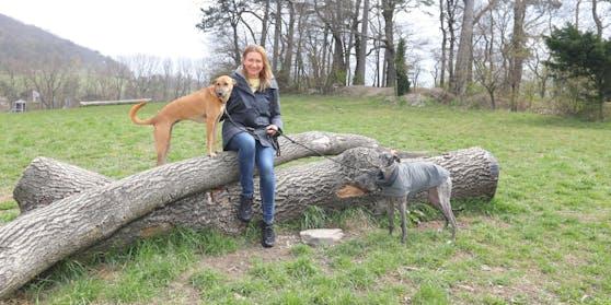 Angelika Niedetzky am Wiener Himmel mit ihrer Hündin Maja (l.) und Lotte, die einer Freundin gehört.