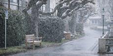 Schnee, Sturm und Gewitter fegen Oster-Freuden davon