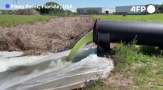 Wegen eines undichten Abwasserbeckens haben im US-Bundesstaat Florida die Nationalgarde und andere Einsatzkräfte daran gearbeitet, eine Umweltkatastrophe abzuwenden.
