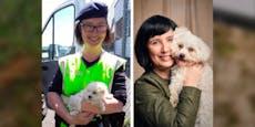 Polizistin rettet Hund, gibt ihm diesen Corona-Namen