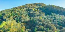 Österreich ist eines der grünsten Länder der Welt