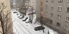 Schneegestöber, Blitze und Donner brechen über Wien ein