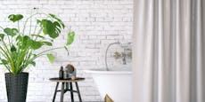 6 Pflanzen, die sich im dunklen Badezimmer wohlfühlen