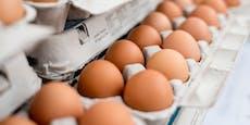 Deshalb solltest du Eierkartons nicht wiederverwenden