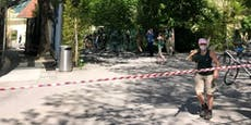 Katta aus Zoo-Gehege in Schönbrunn ausgebüxt