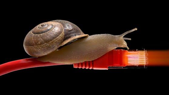 Bald soll mit langsamen Internet im Schneckentempo Schluss sein.