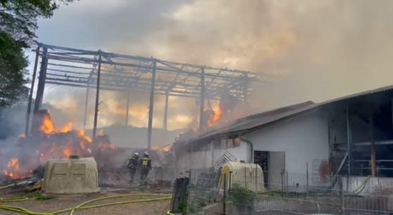 Ein Bauernhof steht in Flammen.