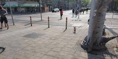 Radfahrer in Wien durch Stahlseil-Falleschwer verletzt