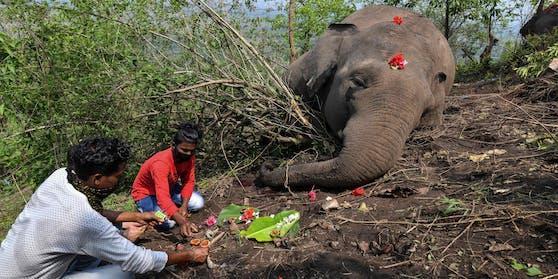 Menschen aus der Umgebung trauern um die Elefanten.