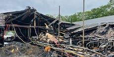 Spendenaufruf für Futter nach Brand auf Bauernhof