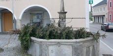 Und das im Mai! Baum-Diebe stehlen Christbaum