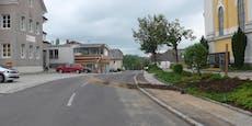 Christbaum-Dieb: Ort zahlt 300 Euro Ergreiferprämie