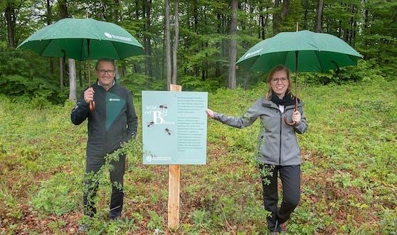 Ökologie und Ökonomie gehen Hand in Hand: Klimaschutzministerin Leonore Gewessler und Bundesforste-Vorstand Rudolf Freidhager beim Lokalaugenschein im Wienerwald