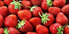 Augen auf beim Erdbeer-Kauf! Darauf kommt es an