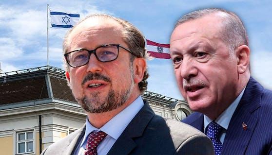 Österreichs Außenminister Schallenberg und Türkeis Präsident Erdogan.