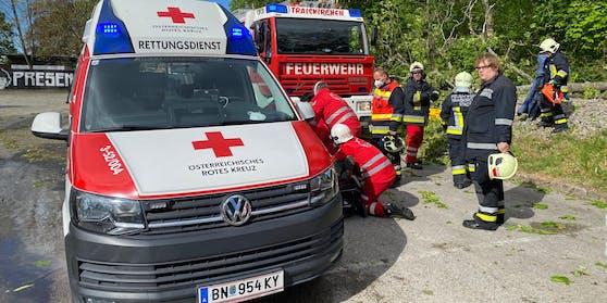 Der Feuerwehrmann wurde schwer verletzt.