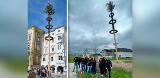 Nicht mal ganz 24 Stunden stand der Maibaum am Linzer Hauptplatz (links). Nun steht er in Steinbruch (Bez. Rohrbach). Sieben Neufeldner haben ihn gestohlen und daheim aufgestellt.