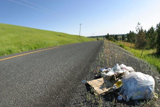 Immer mehr Müll landet einfach am Straßenrand.