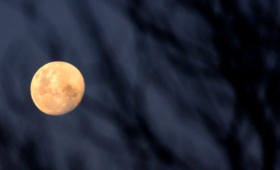 Der Mond in seiner vollen Pracht: Am 26. Mai ist er am erdnächsten Punkt seiner Umlaufbahn.