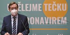 Tschechiens Gesundheitsminister tritt zum 4. Mal zurück