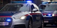 14-Jähriger liefert sich Prügelei, verletzt Polizistin