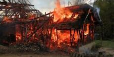 Kälber entgingen auf Bauernhof Flammen-Inferno