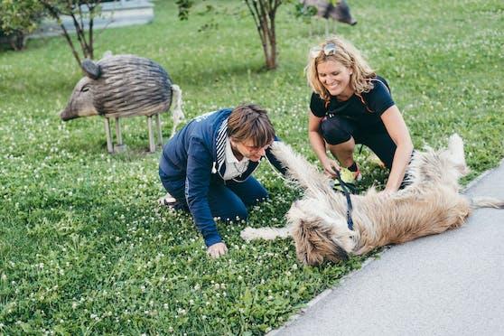 Marika und Katharina aus Wien teilen sich Hündin Eripa - und die genießt die doppelte Aufmerksamkeit.