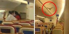 Fledermaus flattert durch Flugzeug, dann wird es brutal