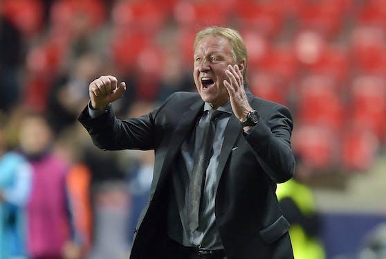 Hrubesch soll den HSV zurück in die Bundesliga führen.