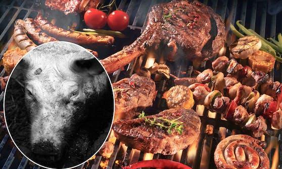 Eine genaue Recherche von Vier Pfoten bittet Fleisch-Konsumenten nun um Vorsicht.