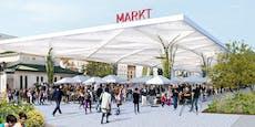 "Kunst-Profi Matt: ""Stoppt den Markthallen-Unsinn!"""