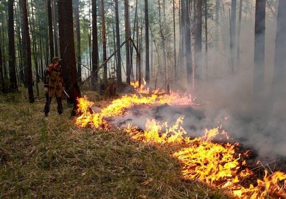 Ein Waldbrand in der Irkutsk-Region. (Archivbild, 2019)