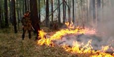 Frustrierter Autostopper legt riesigen Waldbrand