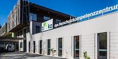 Tierheim in Klagenfurt erbte vier Millionen Euro!