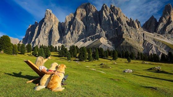 PETA gibt Tipps für gefahrloses Wandern auf Almwiesen.