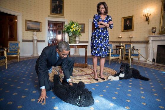 """Barack und Michelle Obama mit ihren Hunden """"Sunny"""" und """"Bo"""". Letztgenannter ist nun gestorben."""