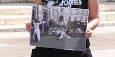 Aktivisten halten Mahnwache für totes Fiakerpferd