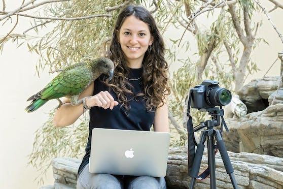 Für ihre Masterarbeit hat Biologin Margarita Hartlieb stundenlang das Gähnen der Tiere in Schönbrunn ausgewertet.