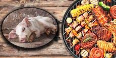 Marktanalyse schockiert! Billigfleisch am Höhepunkt