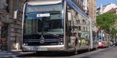 E-Gelenkbus feiert in Wien Premiere, Mitfahren gratis
