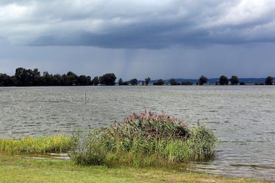 Blick auf den Bodensee bei Hard. Symbolbild