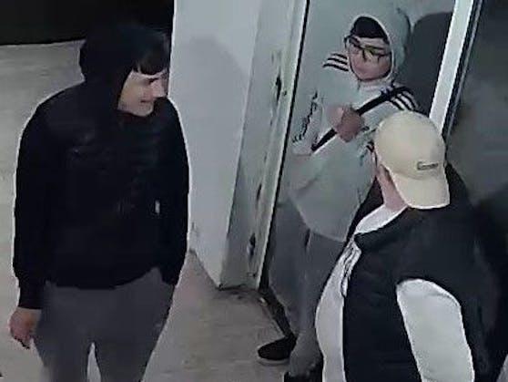 Das soll ein Teil jener Burschen sein, die in Wels drei Personen verprügelten. Die Polizei hat nun diese Fahndungsfotos veröffentlicht.
