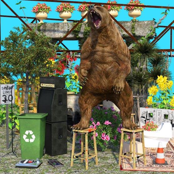 Steppt der Bär nun wieder an den Wochenenden? Zumindest bei der PROOF OF ART in Linz!
